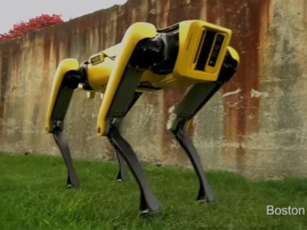 Эволюция «собаки-робота»: от пинков ногой до выхода в свет с главой Amazon