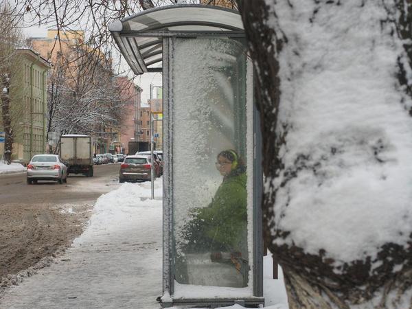 Снег и метель портят жизнь петербуржцам. Но красиво