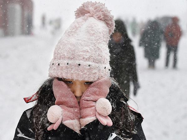 Для сибирских холодов в Европе нет преград
