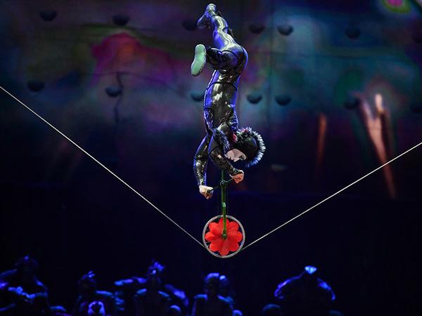 Cirque du Soleil перенесет зрителей в мир муравьев и скарабеев