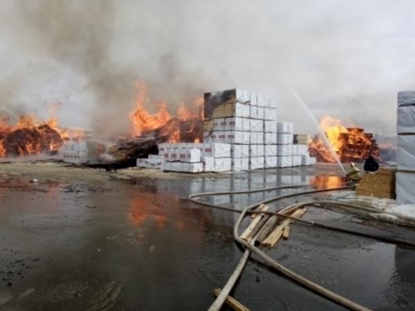 Огонь на предприятии в Ленобласти охватил 2000 квадратных метров