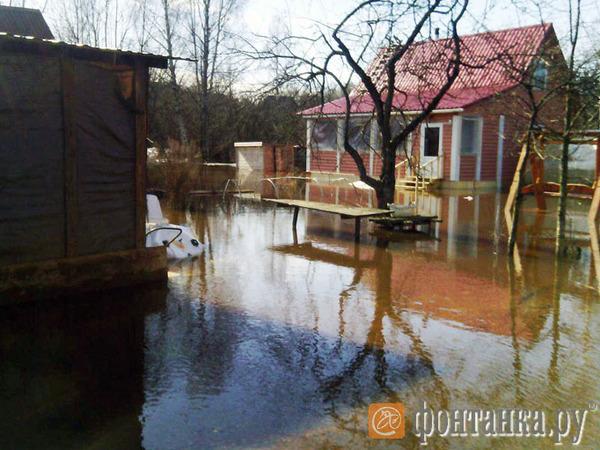 Садоводство «Земледельцы» в Петербурге уходит под воду