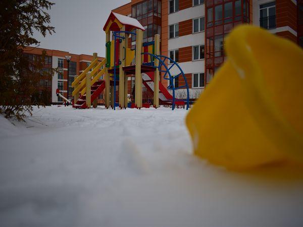 «Чистый снег и свежий воздух». Петербург глазами жителей пригородов