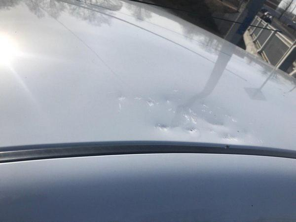 Предоставлено пострадавшим водителем