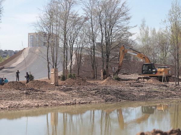 Муринский парк не освободили от болота