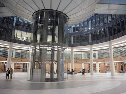 Статус владельцев кабинета в «Невской ратуше» определит пол
