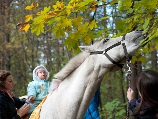 На коне к здоровью