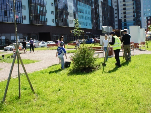 На субботнике в ЖК «Чистое небо» высадили почти 350 деревьев и кустарников