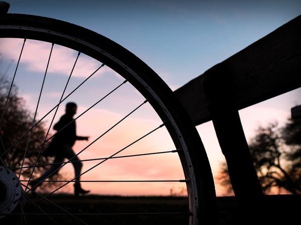 Участникам ЗСД феста: правила участия в забеге и велопробеге