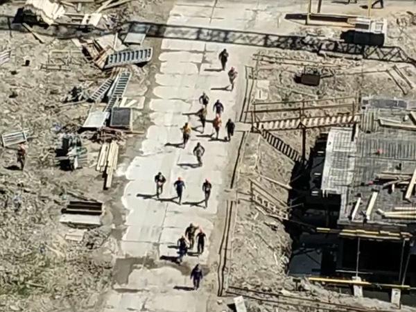 После драки мигрантов на Парнасе в отделы полиции доставили 30 человек