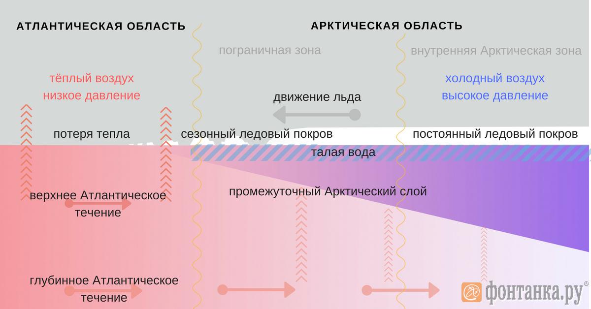 Спасите медведей (и мойву) (Иллюстрация 1 из 1)