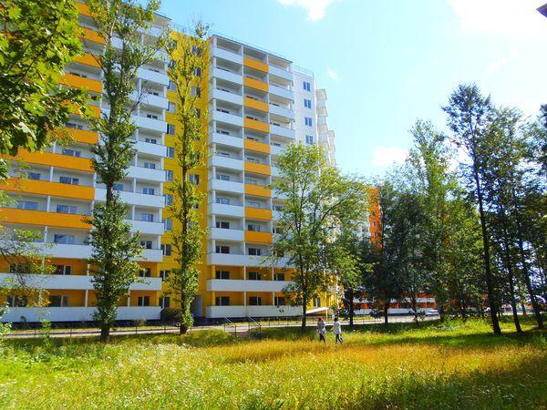«Дальпитерстрой» начал строительство новой школы в Шушарах