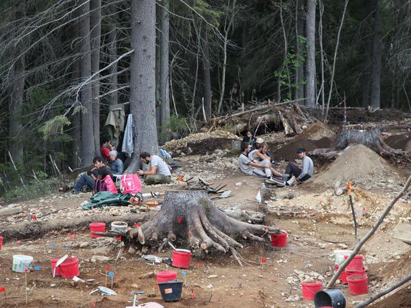 Строительство трассы А-121 Сортавала прервали археологи. В Карелии найдено поселение эпохи неолита