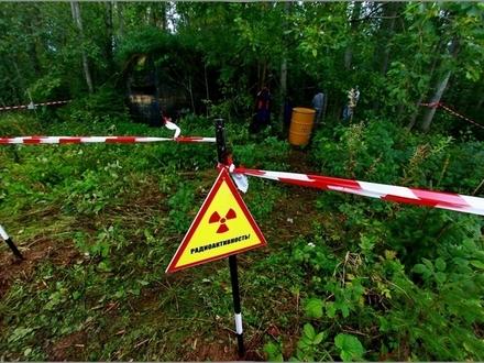 Эхо войны: Как старые ДОТы на «линии Сталина» очищают от радиации