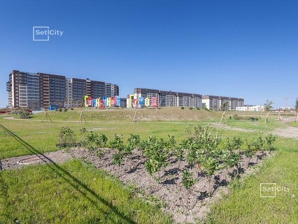 В парке возле ЖК «Солнечный город» выполнены работы по ландшафтному дизайну